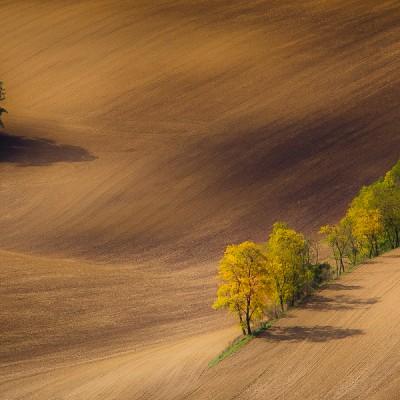 Southern Moravia – Czech Republic