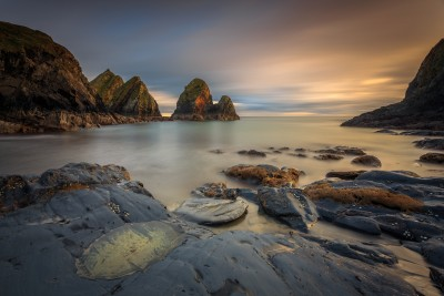 Novohal cove- Cork